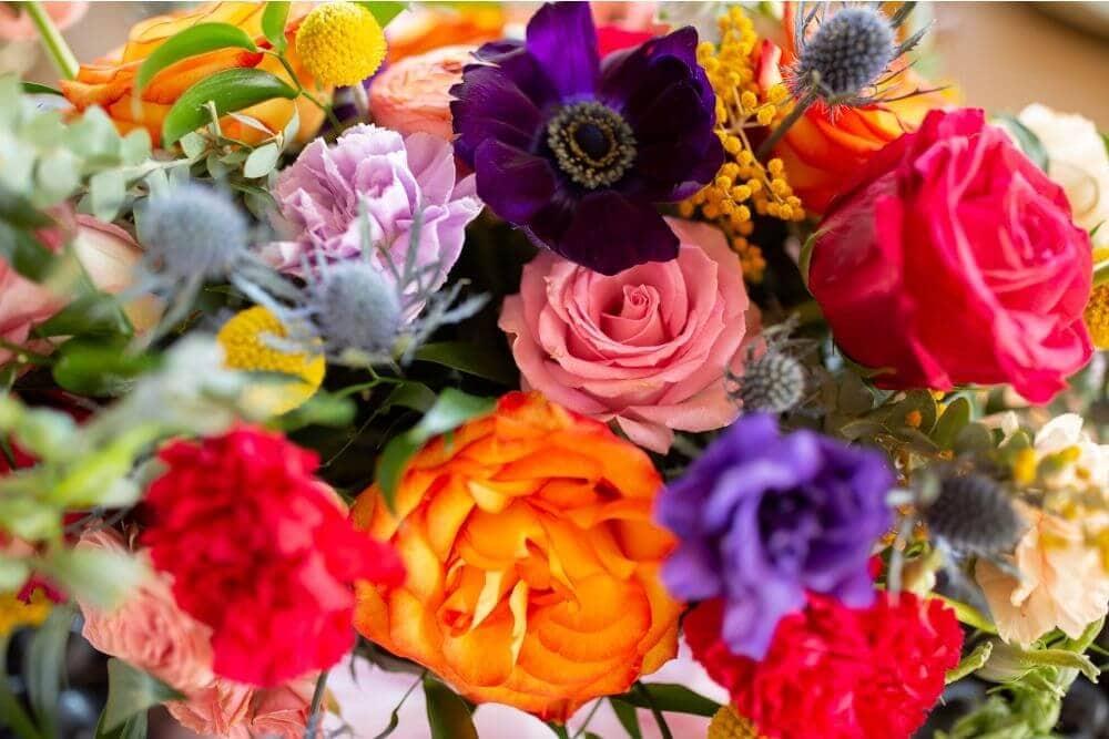 Love in Color at Gruene Estate